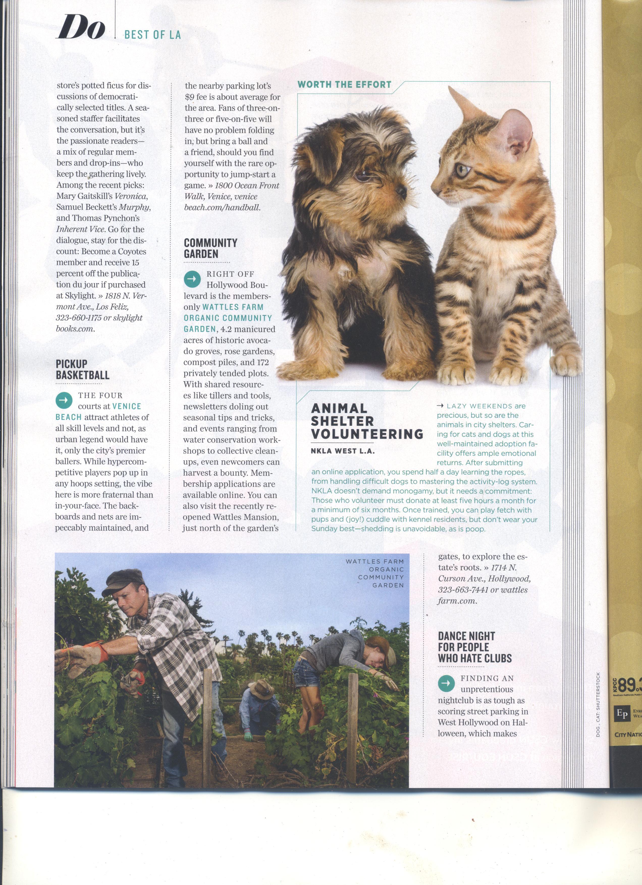 LA magazine Aug 15 - Wattles-2